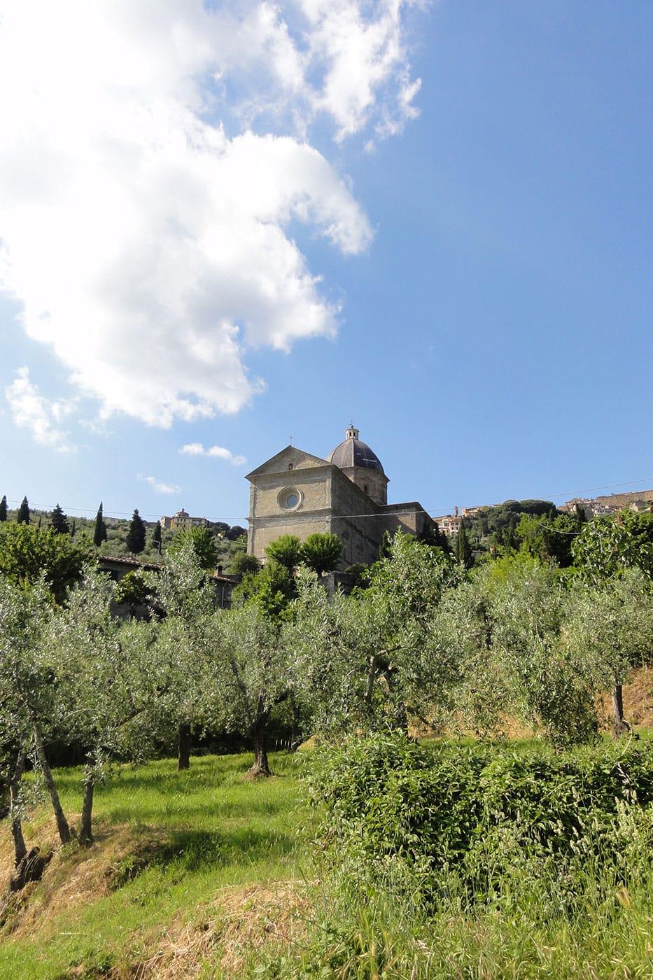 Calcinaio, Cortona