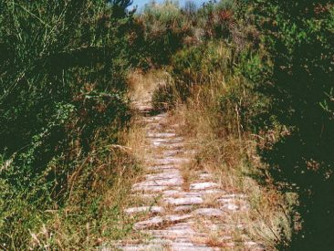Percorsi trekking, Cortona