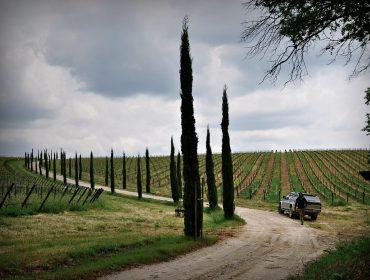 Cortona Private Tours - Cortonaweb